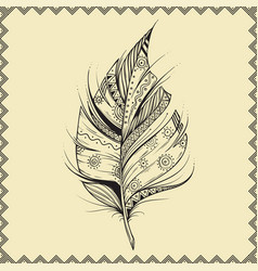 hand drawn feather on beige background with vector image