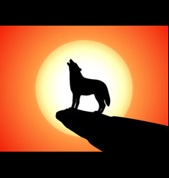 howling wolf stands on a rock at sunset vector image