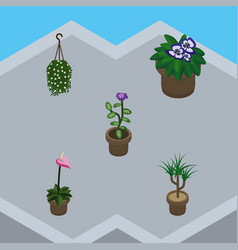 Isometric plant set of flowerpot flower blossom vector