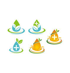 leaf water template set vector image