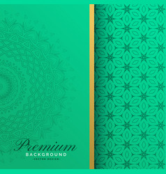 Premium vintage mandala pattern background vector