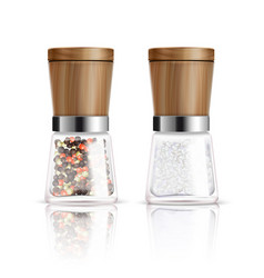 salt and pepper mill composition vector image