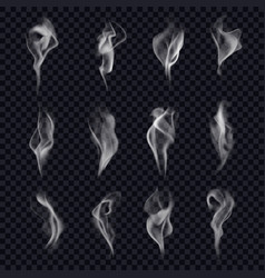 set isolated cigarette smoke or censer steam vector image