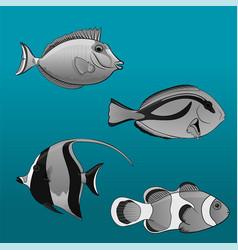 Tropical fish set clown tang vector