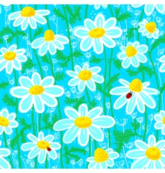 ladybirds and camomile vector image vector image