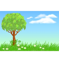 tree on meadow vector image vector image