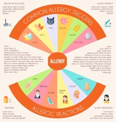 Allergy Infographics Set vector image vector image