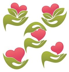 love in my hands vector image