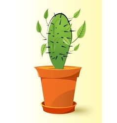 cactus plant in a pot vector image
