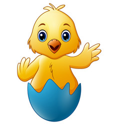 cartoon little baby chicken in the blue broken egg vector image