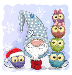 cute cartoon gnome and owls blue background vector image
