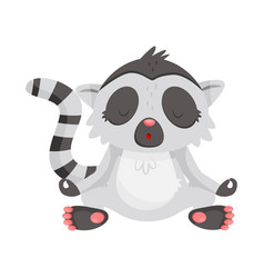 cute lemur meditating with closed eyes animal vector image