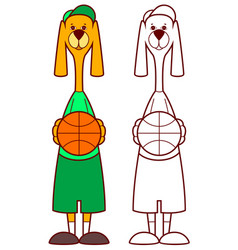 Dog basketball player holding ball vector