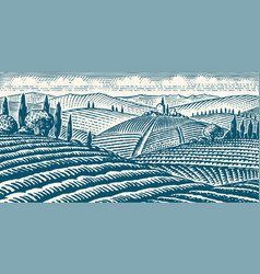 Fields and hills tuscany scenic view of vector