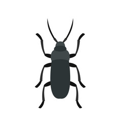 Gray bug icon flat style vector