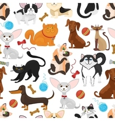 pet background dogs and cats seamless vector image