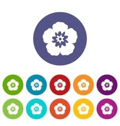 Rose of Sharon korean flower set icons vector