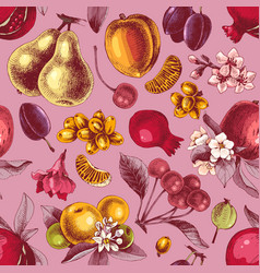 seamless pattern with hand drawn colorful fruits vector image