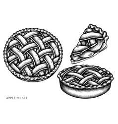 Set hand drawn black and white apple pie vector