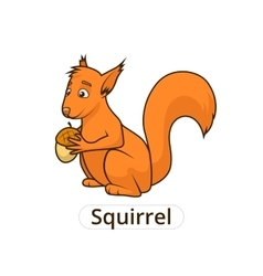Forest animal squirrel cartoon for children vector image vector image