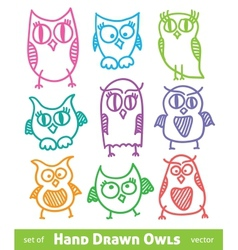 hand drawn owls vector image