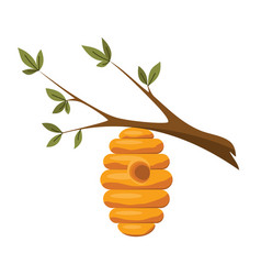 an a beehive suspended from a tree vector image