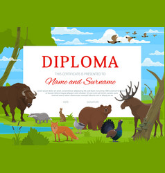 Diploma certificate school education award vector
