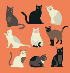 Doodle funny cute hand drawn cat and kitten vector