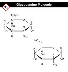 Glucosamine structure vector