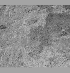 Gray grey rock stone wall vector