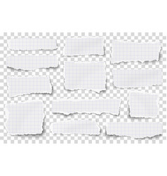 set checkered paper different shapes scraps vector image
