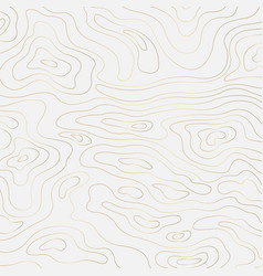 Topographic contour in golden lines and contour vector