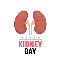 world kidney day healthy poster human vector image