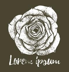 Grunge rose in vintage style vector image