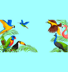 background with tropical exotic birds vector image