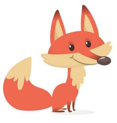 cartoon fox character vector image