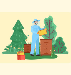 farmer beekeeping and collecting honeycomb vector image