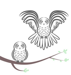 Flying and sitting owl silhouette vector