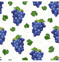 Grape bunch seamless pattern on white background vector