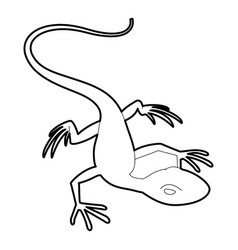 little lizard icon outline style vector image
