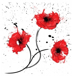 painted red poppy vector image