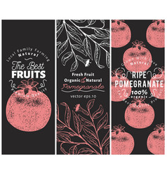 Pomegranate fruit banner set hand drawn vector