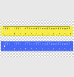 school plastic measuring ruler vector image