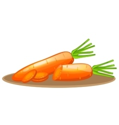 carrot elements with slices vector image vector image