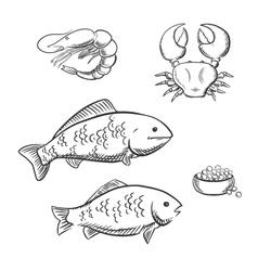 Fish shrimp crab and caviar sketches vector image vector image