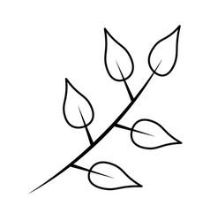 Autumn branch with leaf foliage seasonal vector