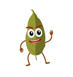 Bay leaf cartoon vector