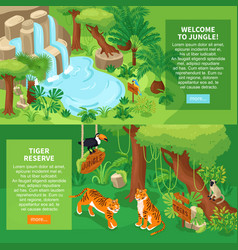 jungle tigers horizontal banners vector image