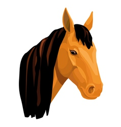 light bay horse vector image