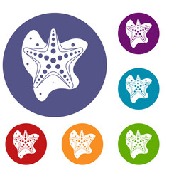 Sea star icons set vector